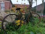 Vélo de Brigitte